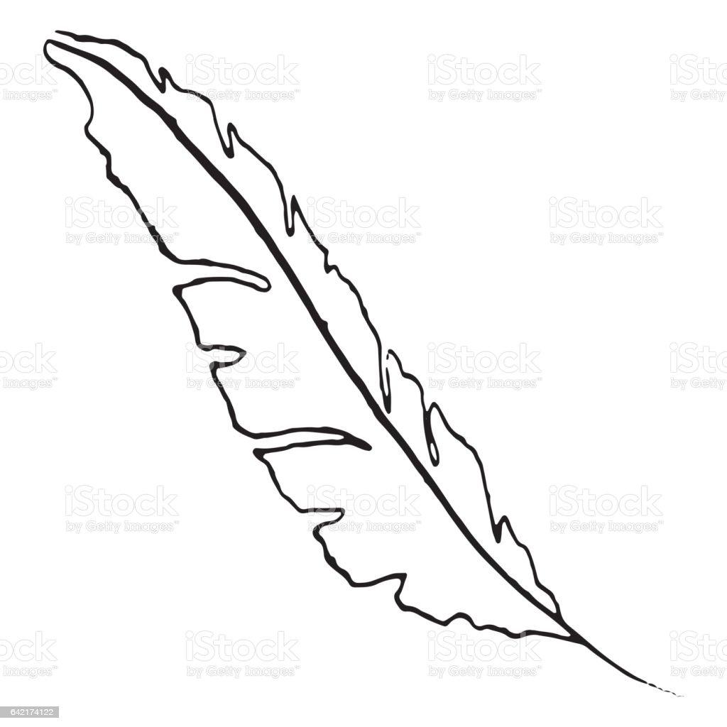 モノクロの白黒鳥の羽のベクトルイラストのアート いたずら書きの