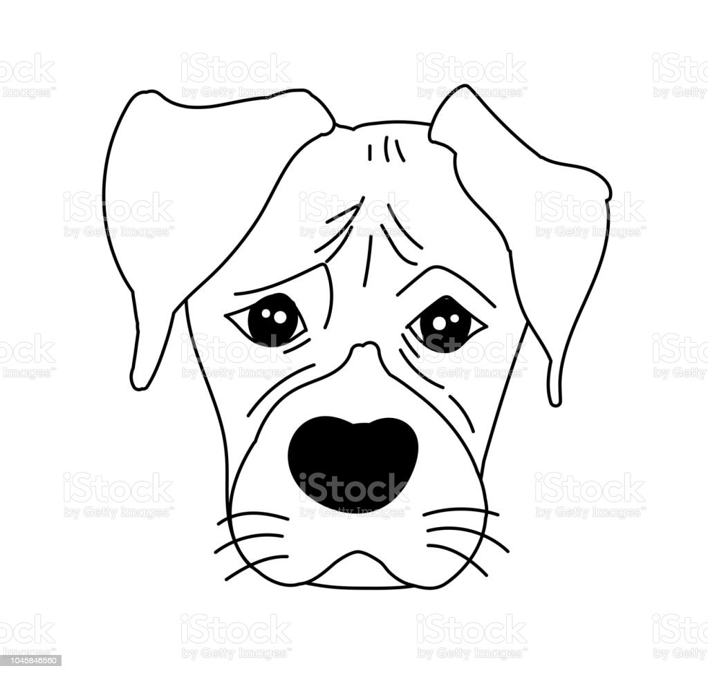 Monochrome Boxer Dog Cute Head And Expression Face Stock Vector Art