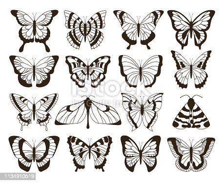 Monochrome butterflies. Black and white drawing, hand drawn tattoo shapes vintage collection. Vector butterfly isolated set