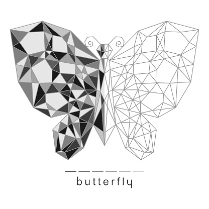 Monochrome butterfly with a geometric pattern.