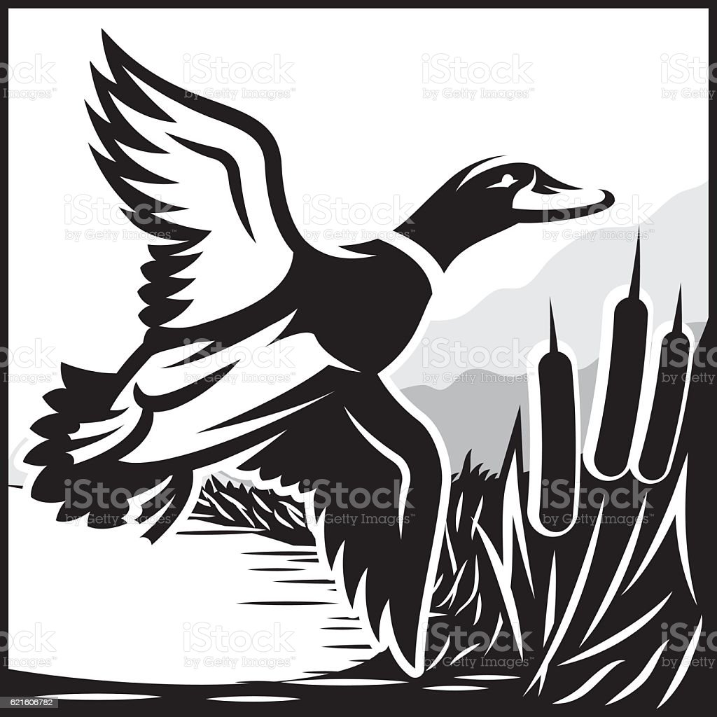 royalty free duck hunting clip art vector images illustrations rh istockphoto com duck hunting clipart free Duck Hunting Shadow