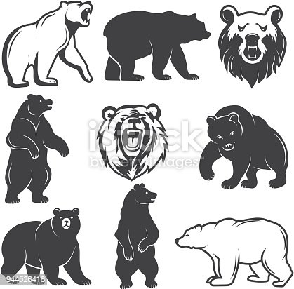 Monochrome illustrations of stylized bears. Pictures set for logos or badges design. Vector bear animal, wild mammal monochrome silhouette