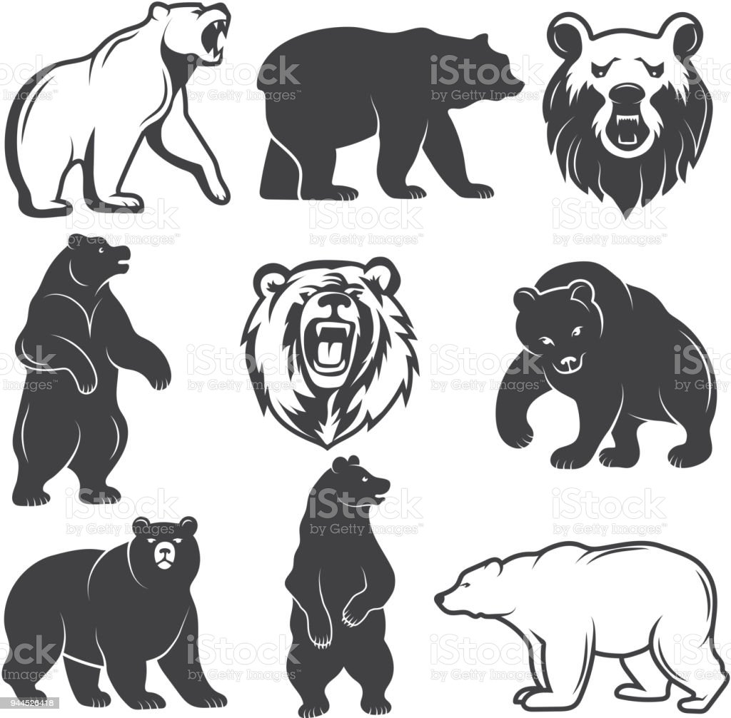 Monochrome illustrations of stylized bears. Pictures set for logos or badges design vector art illustration