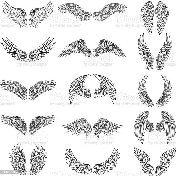 Monochrome illustrations set of different stylized wings for logos or vector id865622932?b=1&k=6&m=865622932&s=612x612&h=ayfy5zpnumi o4ifgjxscpxvzr8whpepdv hhcdvhnu=
