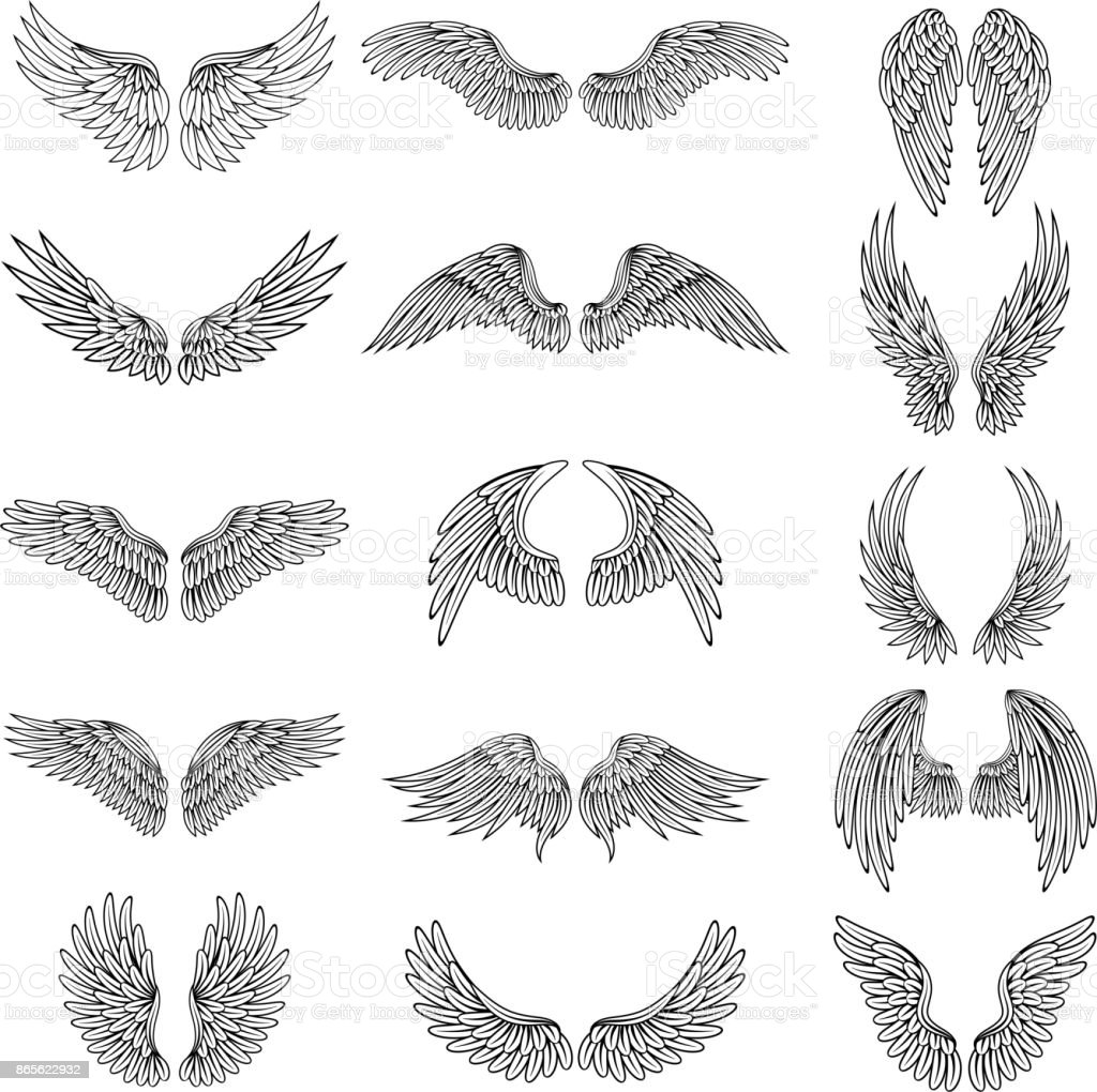 Monochrome illustrations set of different stylized wings for logos or labels design projects. Vector pictures set vector art illustration
