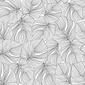 Monochrome monstera leaves seamless pattern. Tropical pattern, botanical leaf on white background. Trendy design for fabric, textile print, wrapping paper. Vector illustration