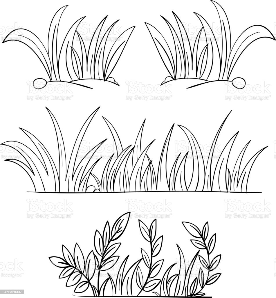 monochrome pencil drawings of grass stock illustration