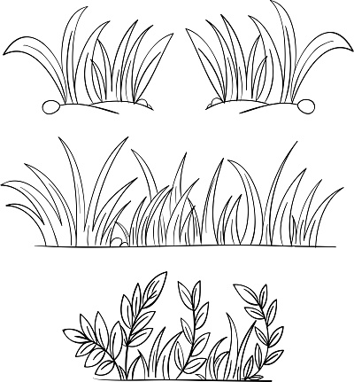 Monochrome Pencil Drawings Of Grass Stock Illustration - Download Image Now