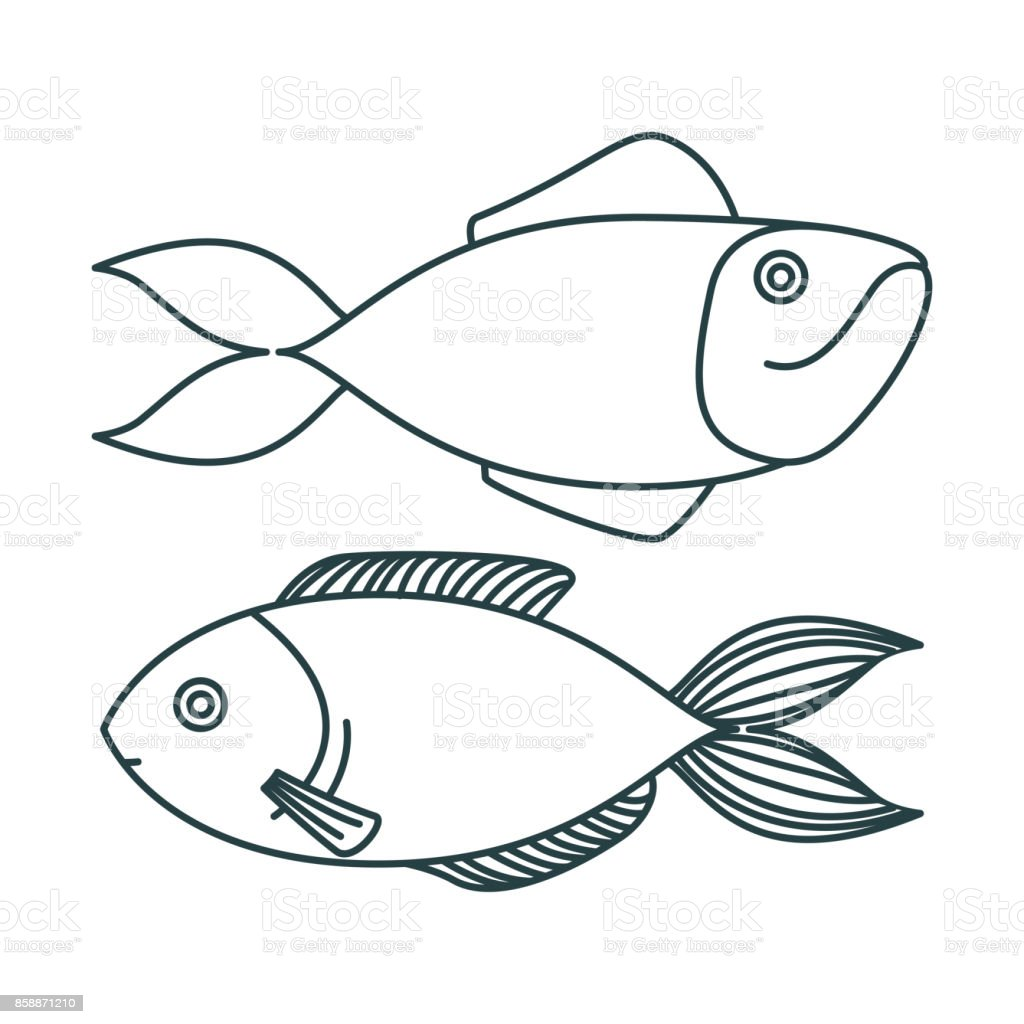 monochrome sketch silhouette pair of types fish vector art illustration