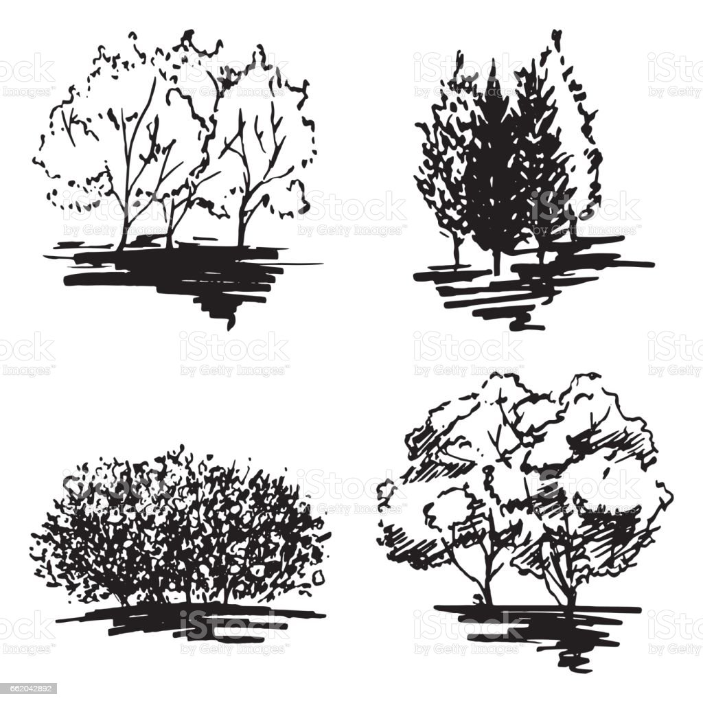 Monochrome tree silhouette sketched line art set isolated vector royalty-free monochrome tree silhouette sketched line art set isolated vector stock vector art & more images of abstract