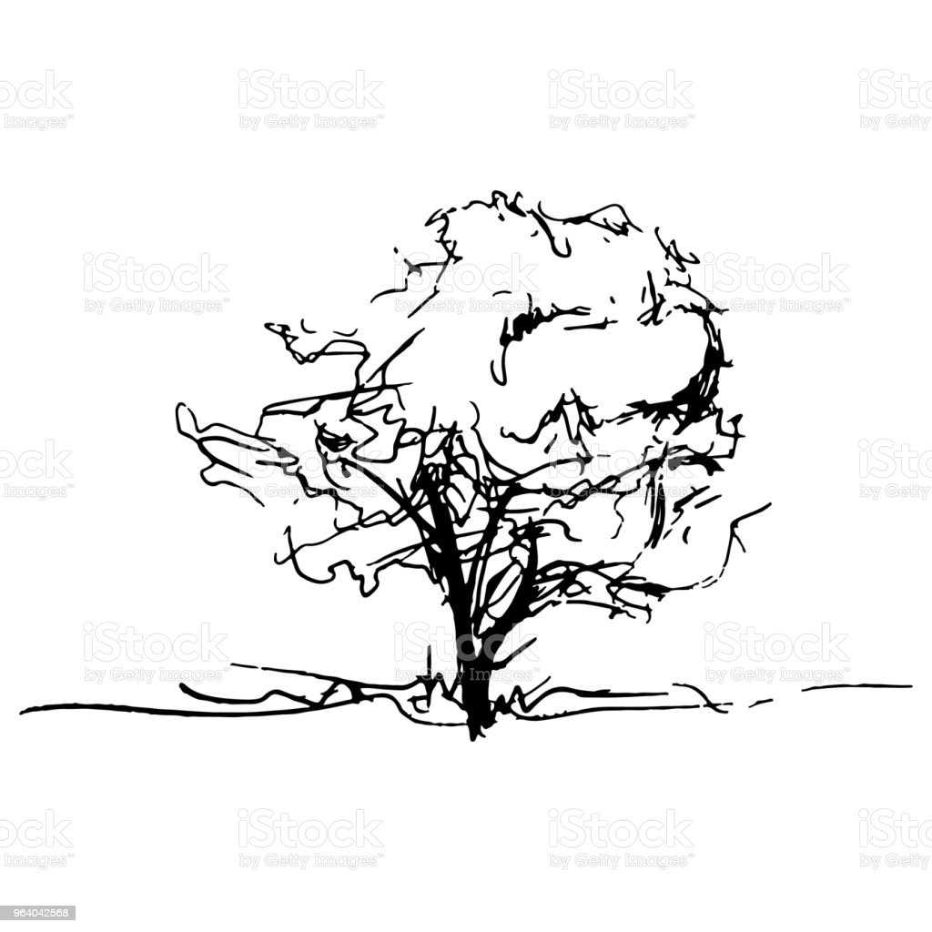 Monochrome tree silhouette vector sketched line art isolated - Royalty-free Abstract stock vector