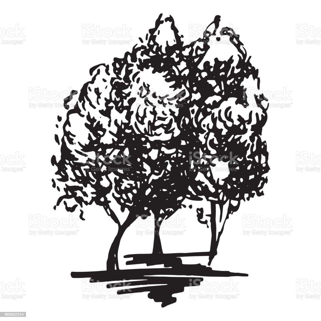 モノクロの木シルエット スケッチ線アート分離ベクトル いたずら書きの