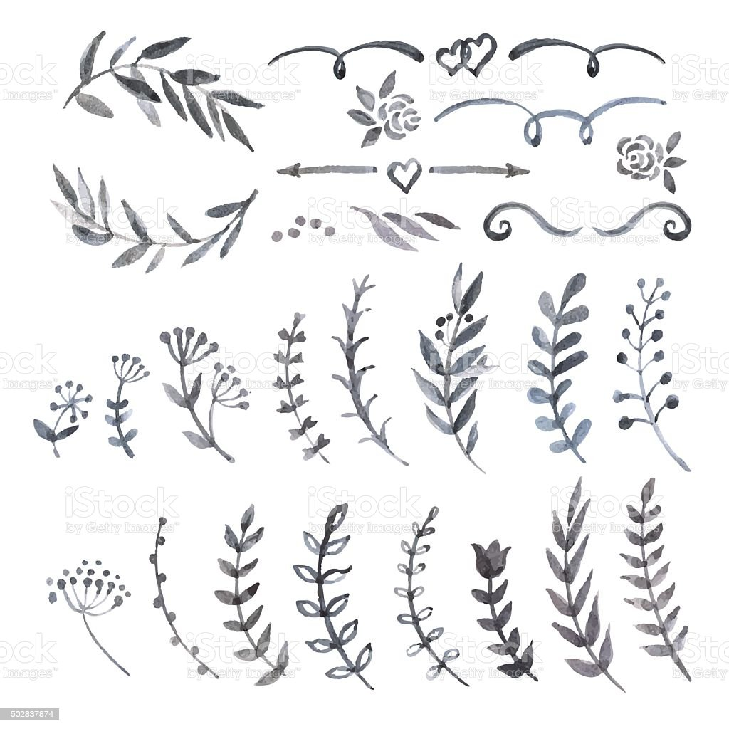 Monochrome watercolor vintage set with herbs vector art illustration