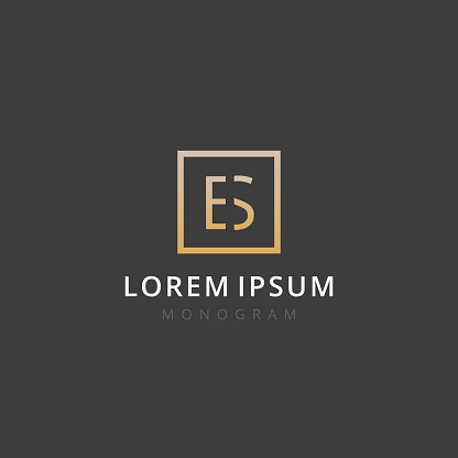 Es Monogram Of Two Letters E S Luxury Simple Minimal And Elegant Es Logo Design Vector Illustration Template Stock Illustration Download Image Now Istock