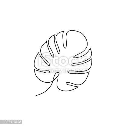 Monstera leaf line style. Continuous one line art drawing tropical palm vector illustration isolated.