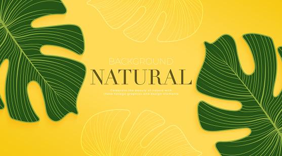 Monstera leaf on bright yellow summer background. Background design for advertising leaflet, banner, poster. Vector illustration