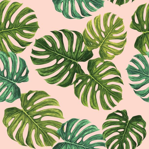 monstera leaf vector pattern - palm leaf stock illustrations, clip art, cartoons, & icons