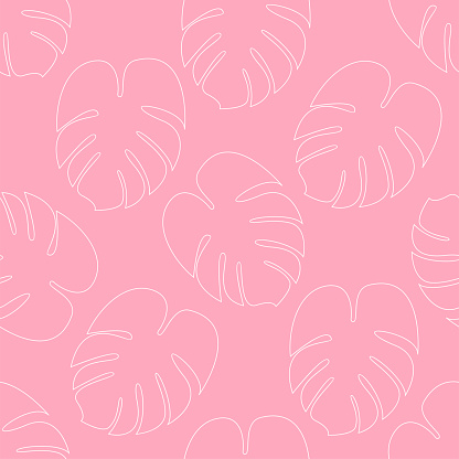 Monstera seamless pattern Vector illustration in outline style