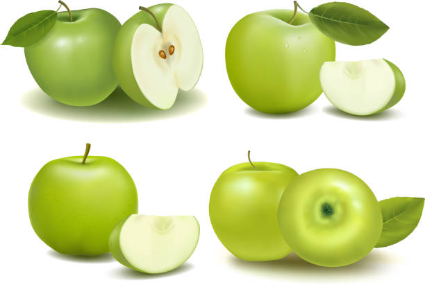 Montage of green apples with pieces cut Apples granny smith apple stock illustrations