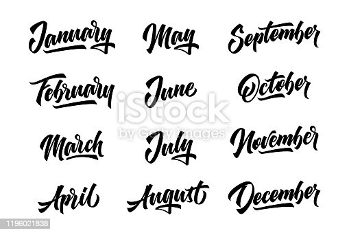 istock 12 month. Handwritten lettering months of the year. Vector illustration. 1196021838