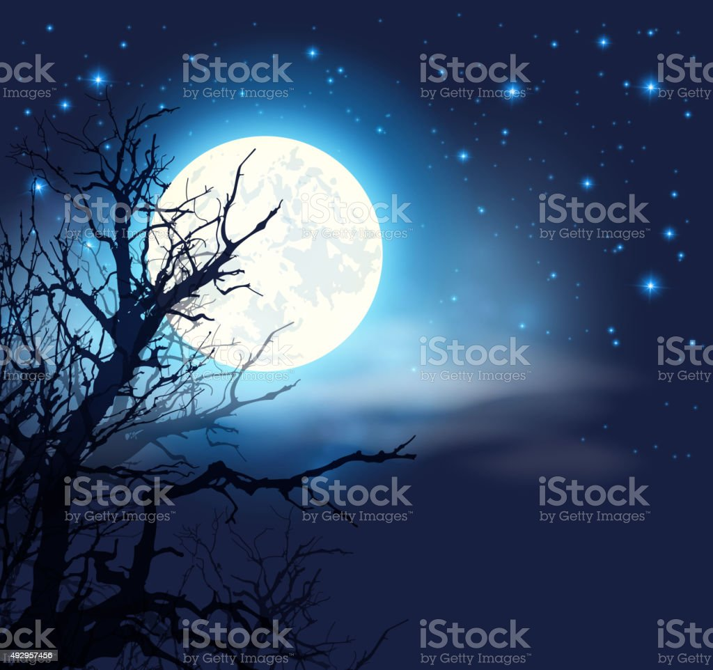 Moon and silhouette of tree vector art illustration