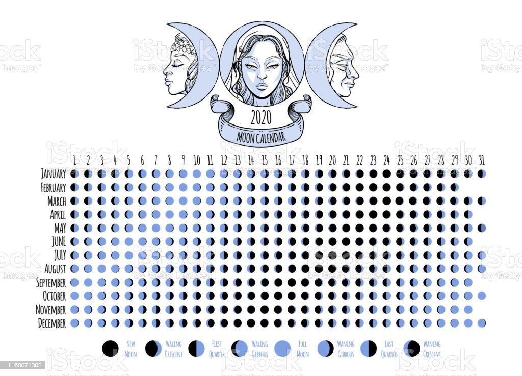 Moon calendar, 2020 year, lunar phases, cycles. Design illustrated...