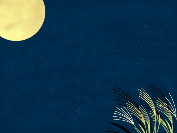 illustrazioni stock, clip art, cartoni animati e icone di tendenza di moon landscape. - miscanthus sinensis