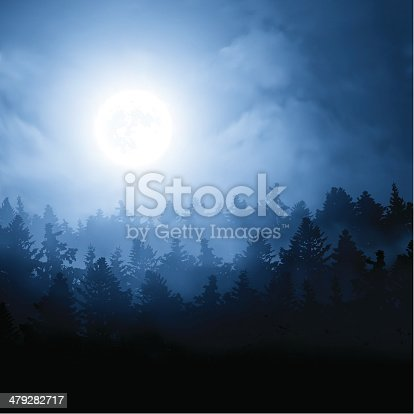 Vector illustration of a night landscape. Blue full moon over the pine forest.