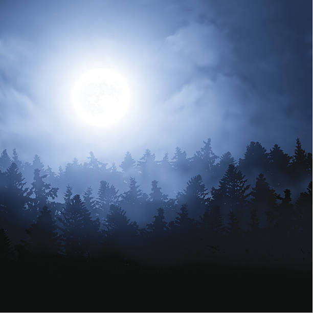 Moon over the forest vector art illustration
