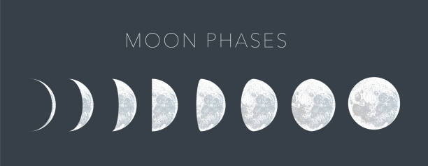moon phases dot vector background - moon stock illustrations, clip art, cartoons, & icons
