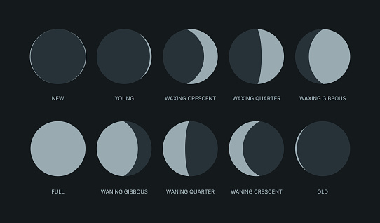 Moon phases. Night symbols for moon calendar circle round shapes logos waxing pack garish vector stylized forms isolated