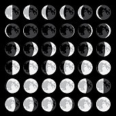 Moon phases in vector