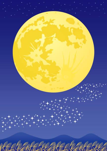 illustrazioni stock, clip art, cartoni animati e icone di tendenza di moon viewing. - miscanthus sinensis