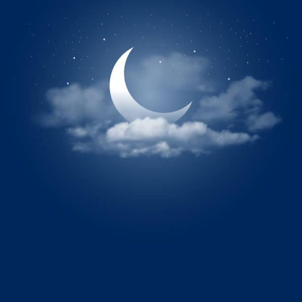 Moonlight night vector art illustration
