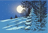 Vector drawing of a frosty winter night.