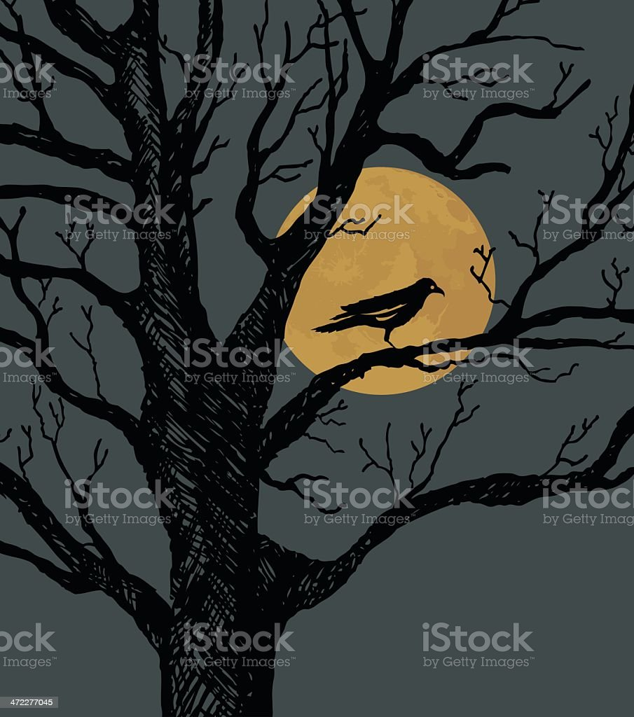 Moonlit Night royalty-free moonlit night stock vector art & more images of animal