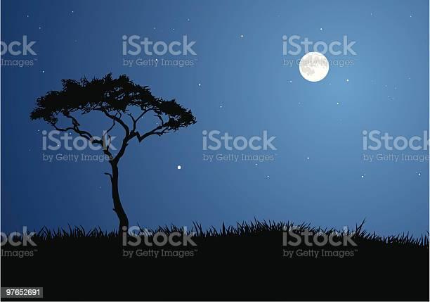 Moonlit Savannah Stock Illustration - Download Image Now