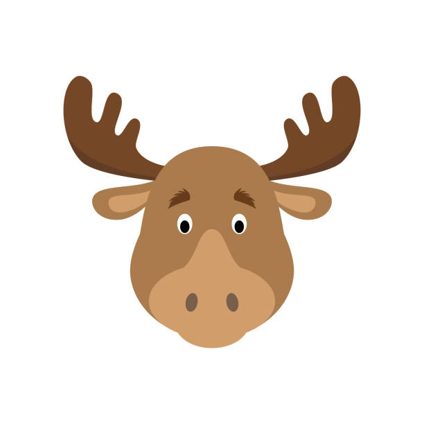 Moose face in cartoon style for children. Animal Faces Vector illustration Series Moose face in cartoon style for children. Animal Faces Vector illustration Series elk stock illustrations