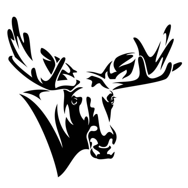 moose head front view black and white vector design moose head front view black and white vector design elk stock illustrations