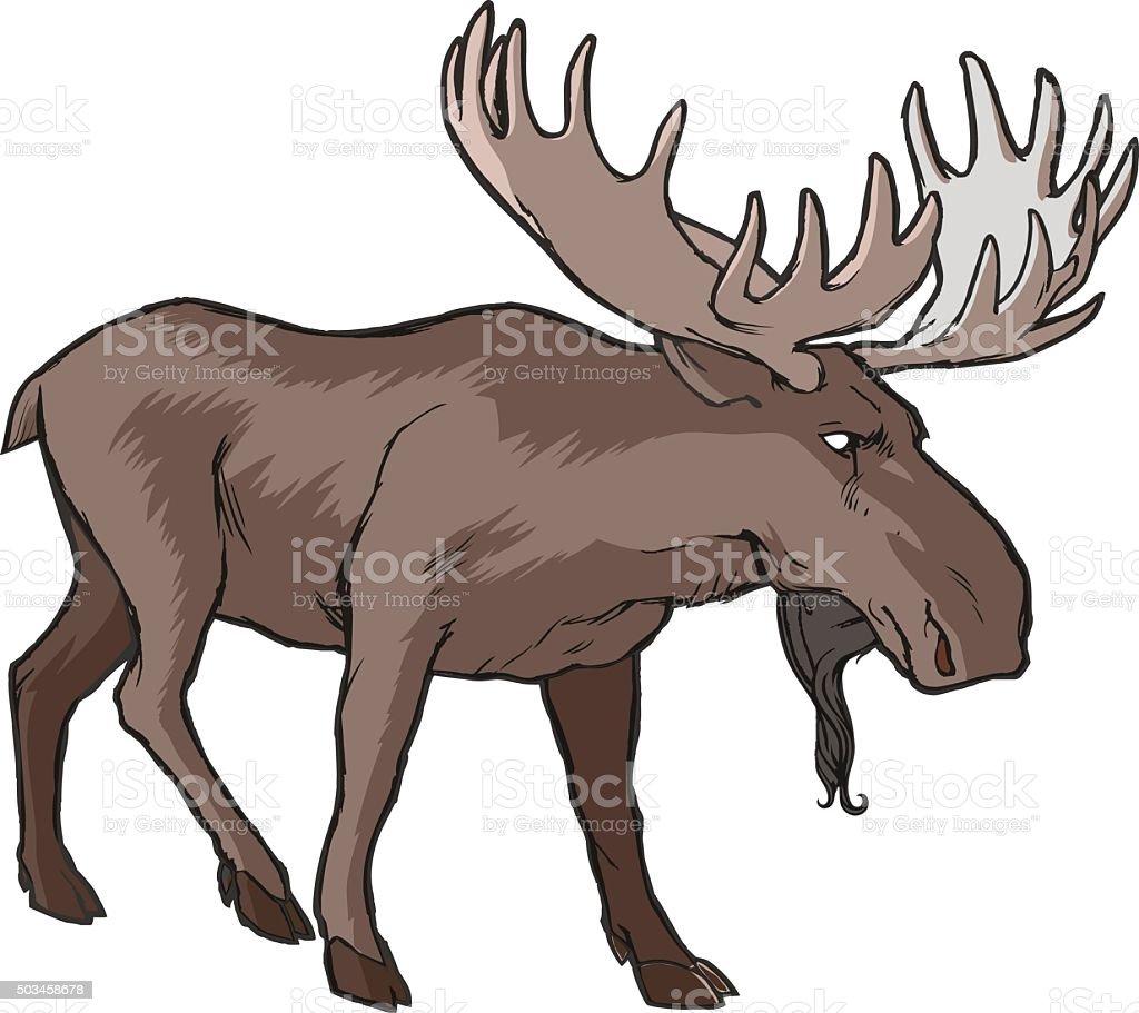 royalty free bull moose clip art vector images illustrations istock rh istockphoto com moose clip art free images moose clip art free images