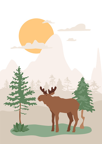 Moose in forest, pine trees, hills and sun on background. Vector abstract illustration with landscape and cloven-hoofed mammal wild animal.