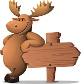istock Moose: Leaning 483663023