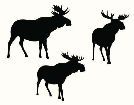 Moose Meese Vector Silhouette