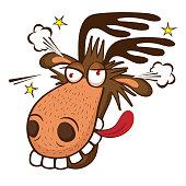 Moose face cartoon - photo#45
