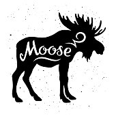 """Moose silhouette with a calligraphic inscription """"Moose"""" on a grunge background. Vector illustration"""