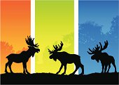 Moose silhouettes in an orange, green and blue seasonal landscape.