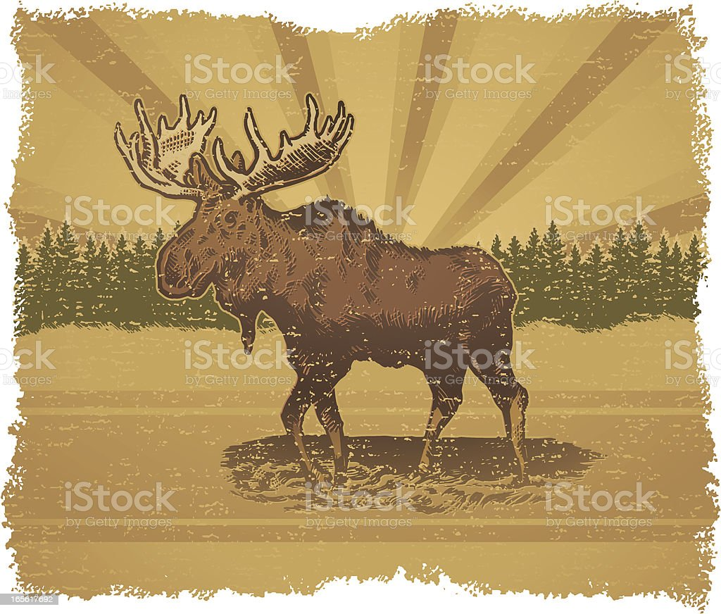 Moose Standing Outside with Trees in Background - Royalty-free Animal stock vector