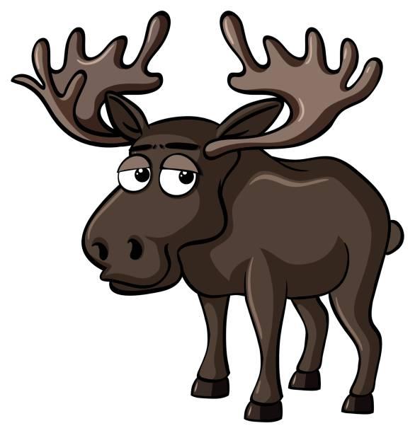 Moose face cartoon - photo#30