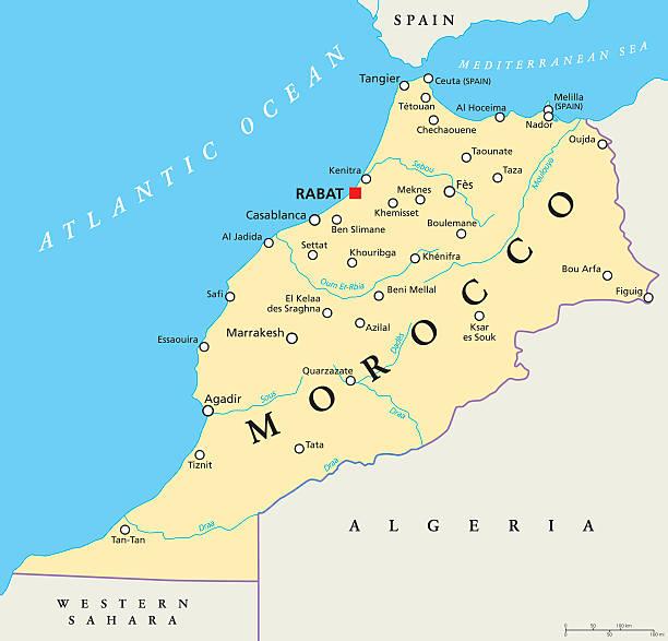 morocco political map - 阿爾及利亞 幅插畫檔、美工圖案、卡通及圖標