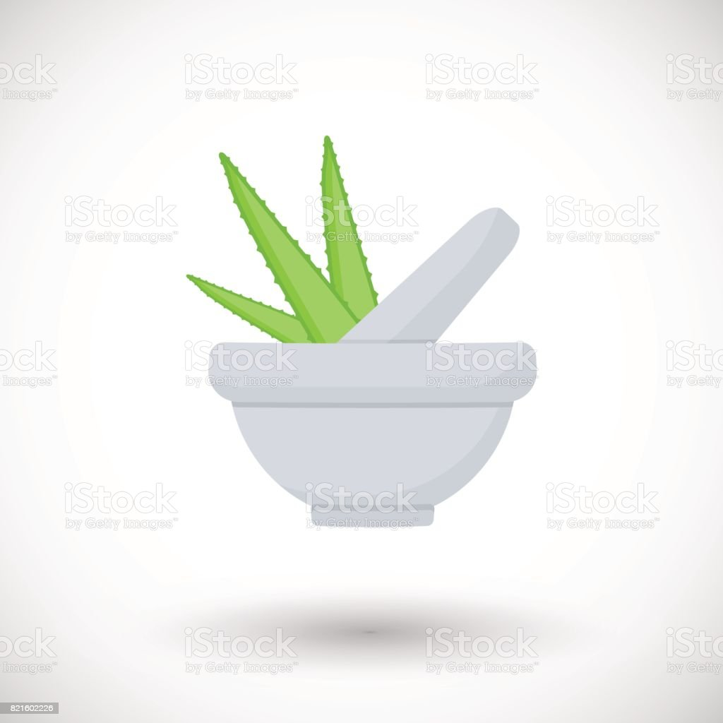 Mortar herbs with aloe vector flat icon vector art illustration
